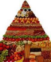 pirâmide-alimentar-artigo