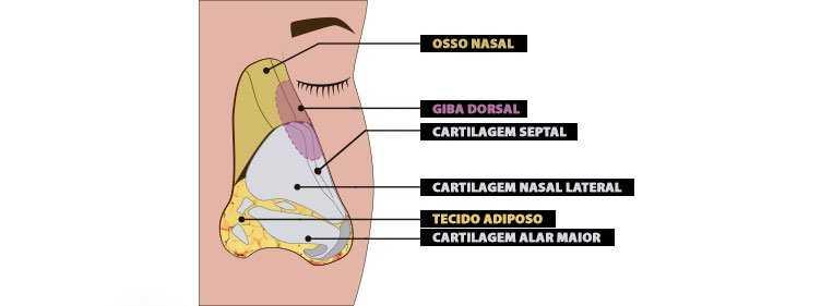 nariz masculino