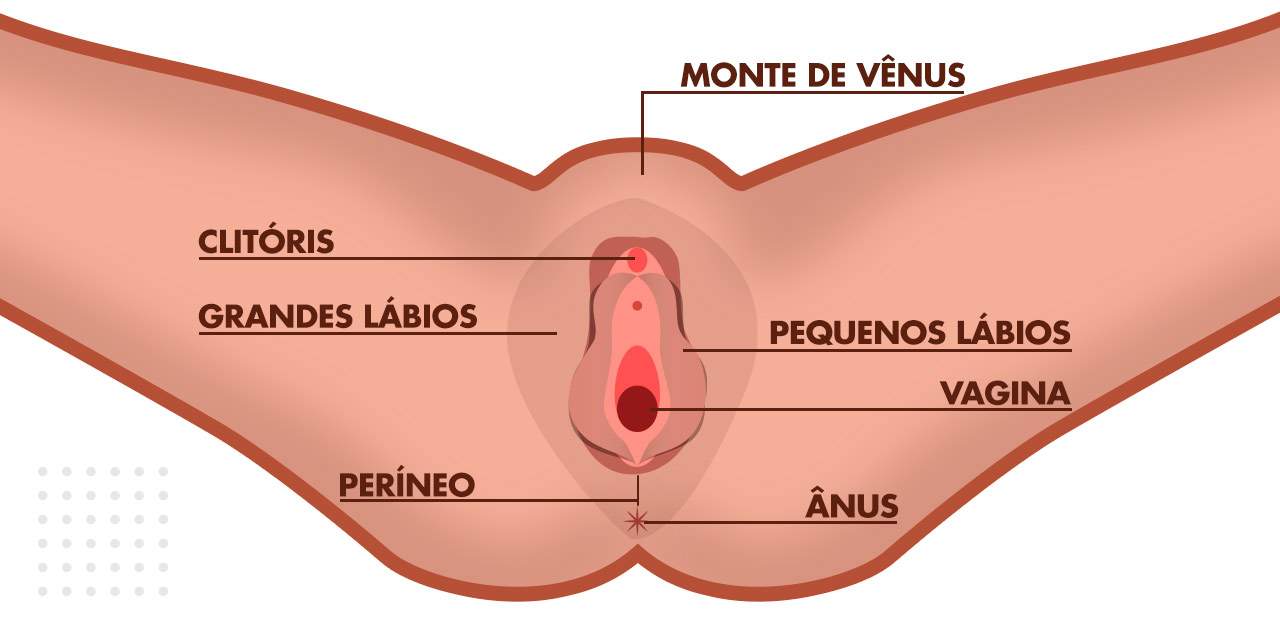 cirurgia de ninfoplastia